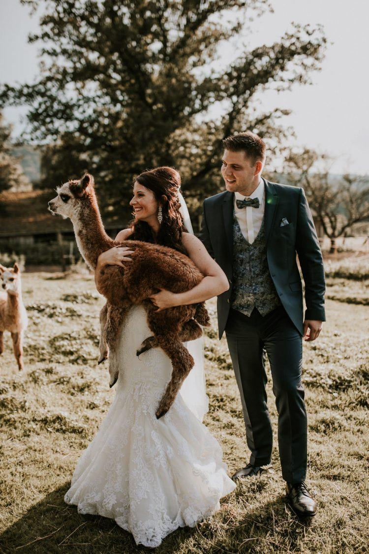 Brautshooting mit Alpakas